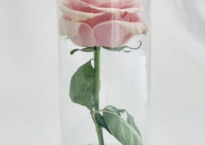 Solitario invertido vidrio 33 cm